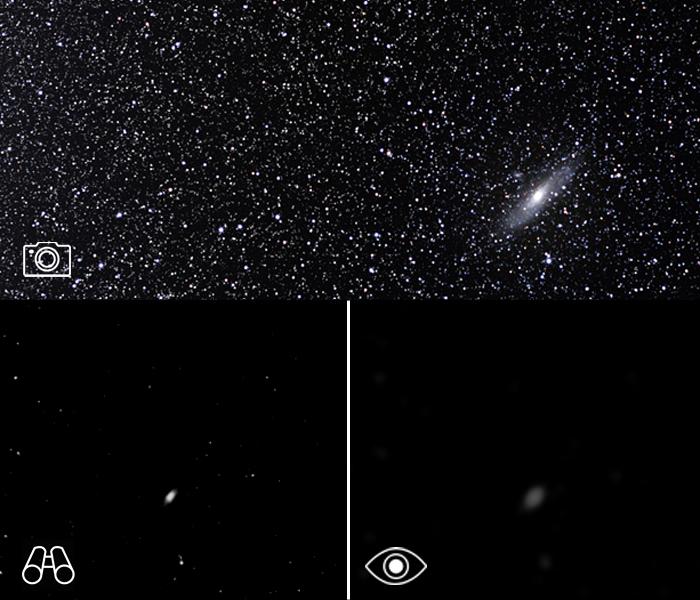 A galáxia vizinha de Andrómeda é semelhante a nossa própria galáxia, que provavelmente nunca iremos ver de longe. Aspeto fotográfico com telescópio, binóculo e a olho nu (dimensão exagerada). Crédito: ESO/S. Brunier/GRM